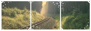 (f2u) Forest Divider 3 by StarstruckDoodle