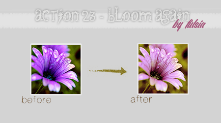 Action 23 - Bloom again by Fulsia