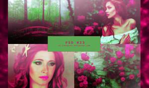 PSD #023 - Roses