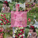 PSD Coloring 8 - Pink Garden by spectarkles
