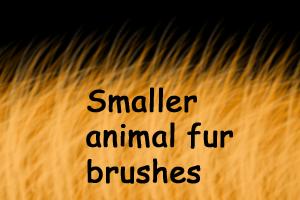 Fur photoshop brushes