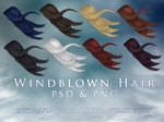 Windblown Hair PSD and PNG