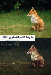 Effect PSD by rakanksa
