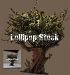 2019Cutout64 by Lollipop Stock by Lollipop-Stock