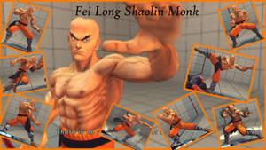 Fei Long Shaolin Monk