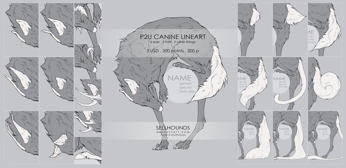 P2U Canine Lineart