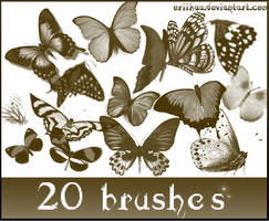 Butterfly Brushes by eriikaa