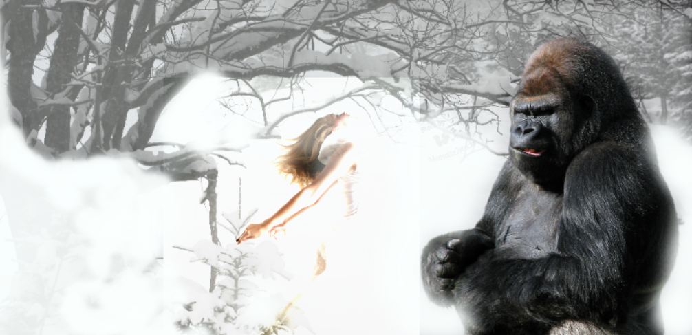 king kong  and  the  snow by rochele10