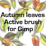 Autumn Leaves active brush by sankyaku
