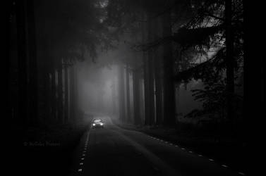 Into The Night by Nelleke