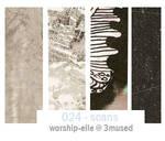 024 - various scans