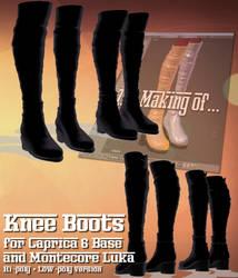 [MMD PMX] Knee-high boots DL (Montecore + C6)