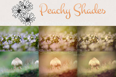 Peachy Shades Photoshop Actions