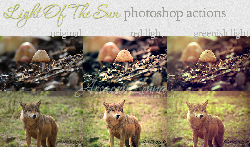 Light Up The Sun photoshop actions