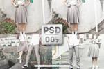 PSD 009 : Gray