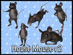 House Mouse v2