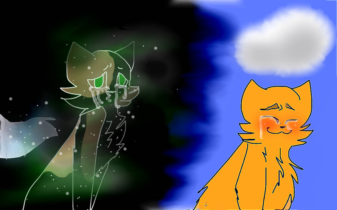 Spottedleaf X Firestar by CelesticalSun3479 on DeviantArt