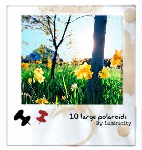Large Polaroid Brushes by luminicity