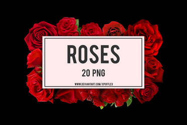+ROSES | PACK PNG #01