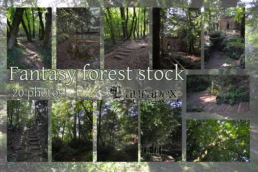 Fantasy forest stock