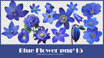 Flower png pack #02
