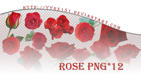 Flower png pack #03 by yynx151