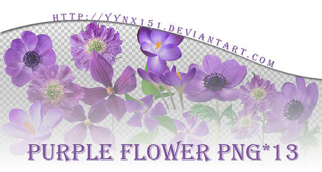 Flower png pack #04 by yynx151