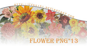 Flower png pack #05