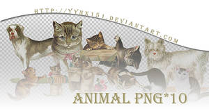 Animal png pack #03