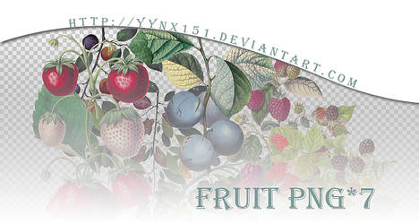 Fruit png pack #03