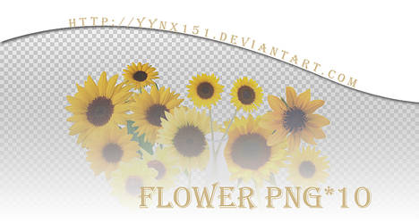 Flower png pack #08