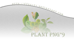 Plant png pack #03 by yynx151