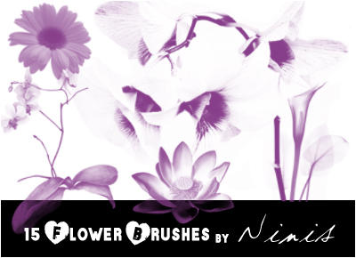 flower brushes by Ninis