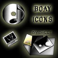 Boay Icons
