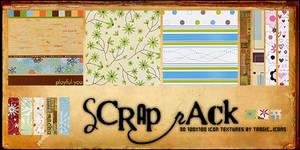 Scrap Pack 06