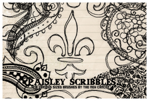 Paisley Scribbles by SwearToShakeItUp