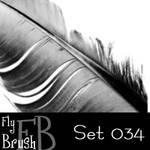 FlyBrush- set 034