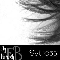 FlyBrush- set 053