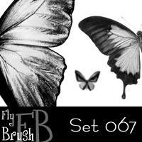 FlyBrush- set 067 by FlyBrush