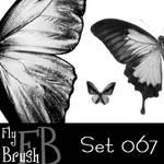 FlyBrush- set 067