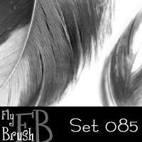 FlyBrush- set 085