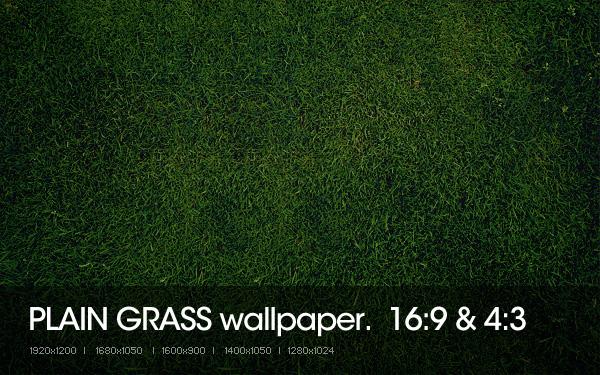 Plain Grass