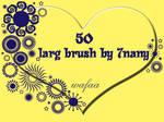50 larg brush