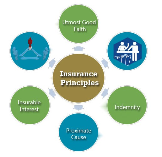 Insurance Principles by arkjas on DeviantArt