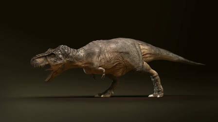Tyrannosaurus. Animation test