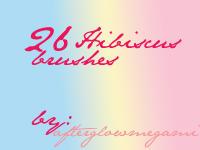 26 Hibiscus Brushes by goddessoffangirls