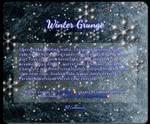 Winter Grunge (Journal Skin)