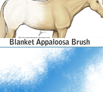 Blanket Appaloosa Brush by Taint-ed