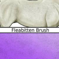 Fleabitten Brush by Taint-ed