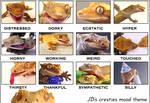 Crested Gecko Moods for LJ